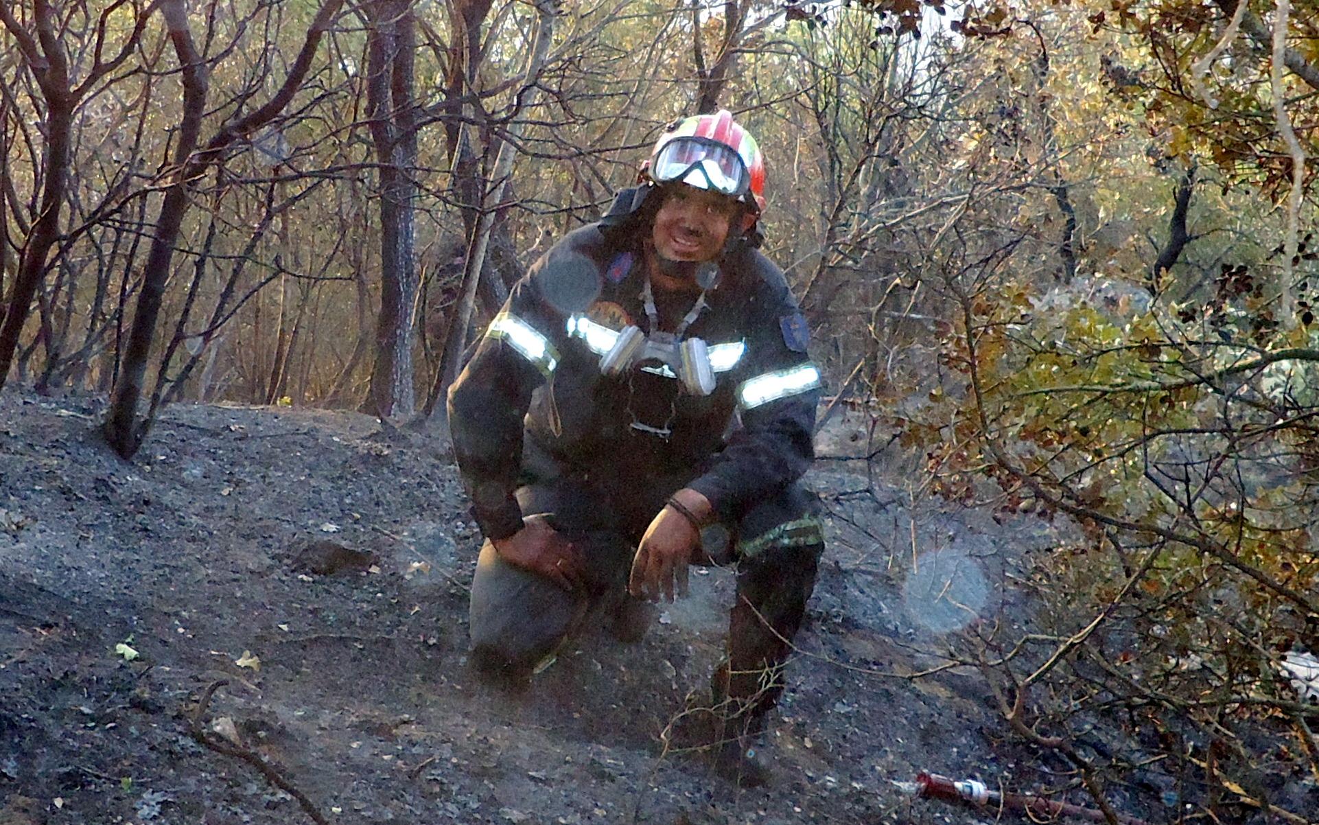 Εμείς οι Πυροσβέστες και η μάχη με τις δασικές πυρκαγιές.