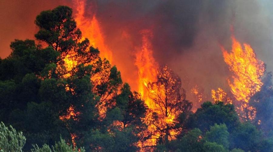 Διαχείριση μετακίνησης των συναδέλφων στην πυρκαγιά της Σάμου.
